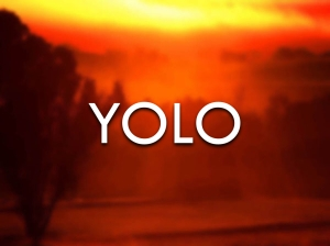 yolo_attitude.001