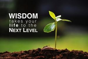 next_level_wisdom.001
