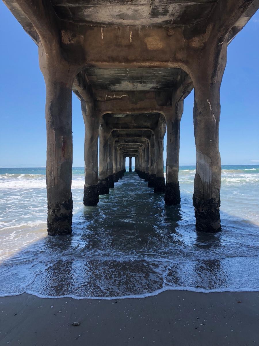 Beachcomb Your Life